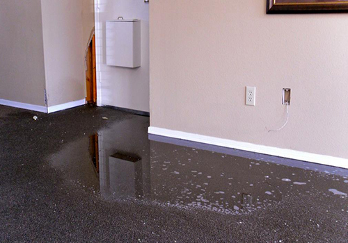 Flood carpet restoration remediation palm springs palm desert
